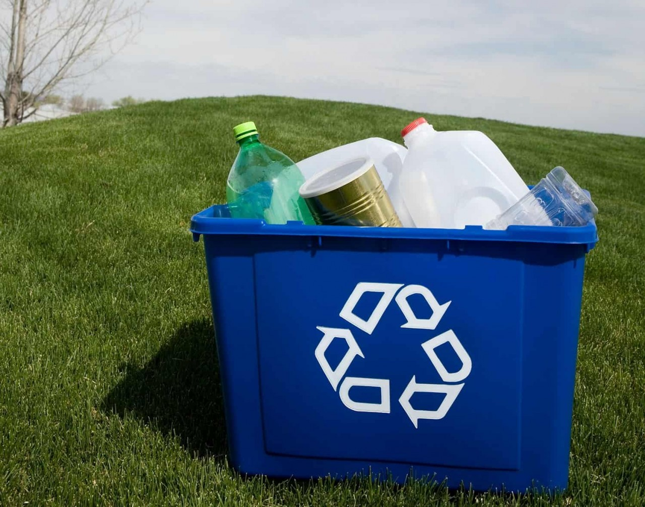 How to Ensure Best Recycling Practices in Your Business